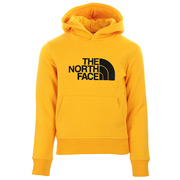 The North Face Drew Peak Hoodie Kids