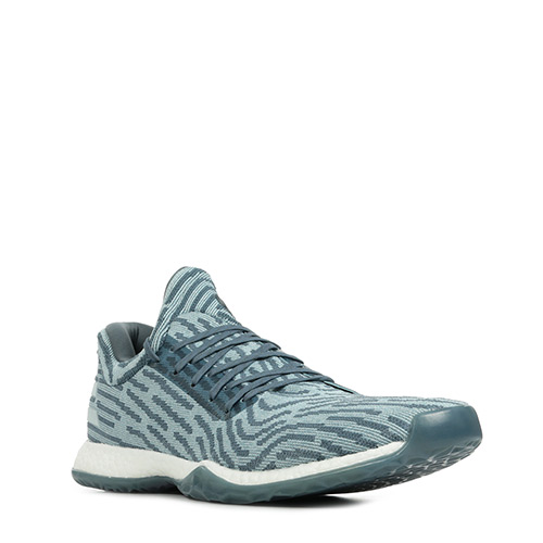 Harden Vol. 1 LS Primeknit Raw Steel