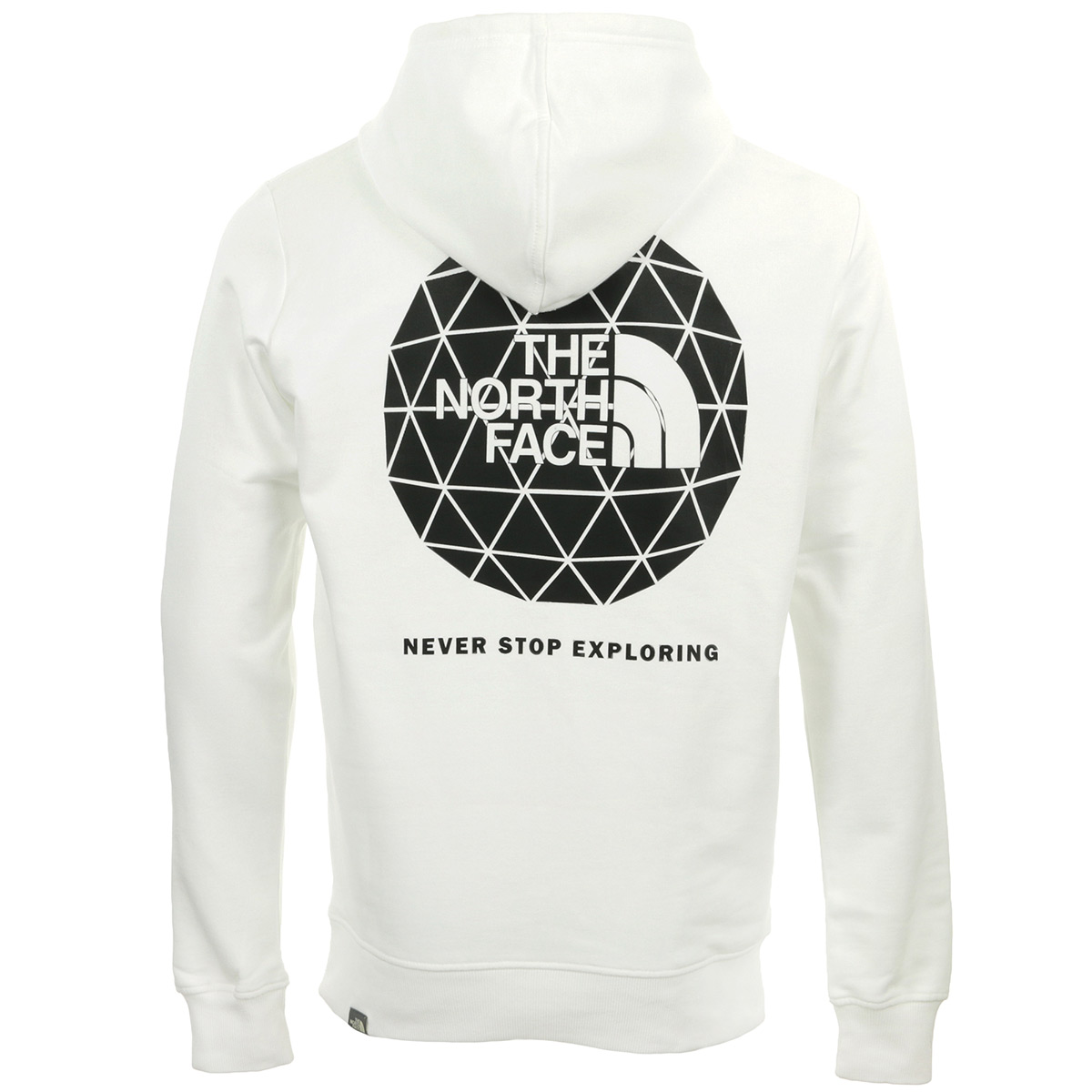 The North Face Geodome Hoodie